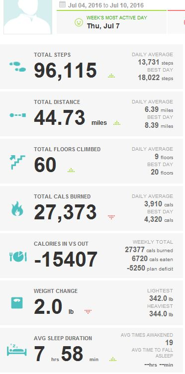 2016-07-10_KUHN_WEIGHT_LOSS_FITBIT_REPORT