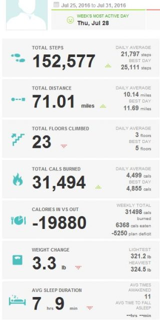 2016-07-31_KUHN_WEIGHT_LOSS_FITBIT
