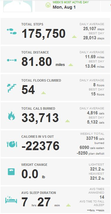 2016-08-10_KUHN_WEIGHT_LOSS_FITBIT_REPORT